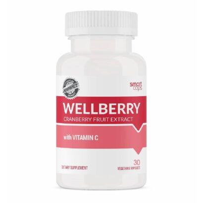 wellberry 30 kapsul 378549