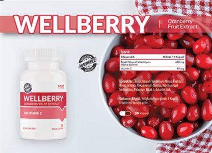 wellberry 30 kapsul fe4070